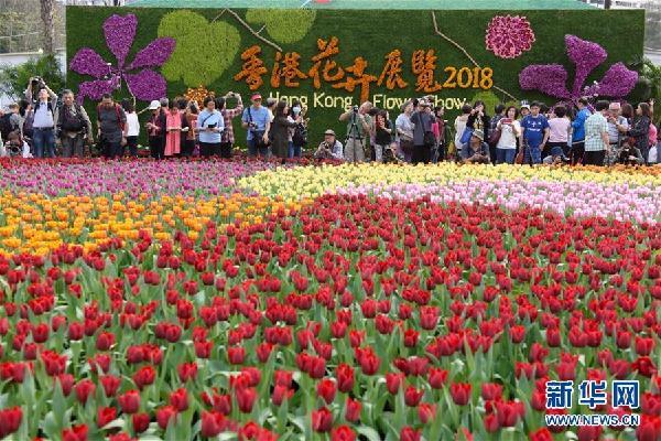 2018 оны Хонконгийн цэцгийн үзэсгэлэн нээгдэв