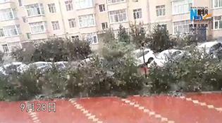 Өвөр монголын олон нутгаар цас оржээ