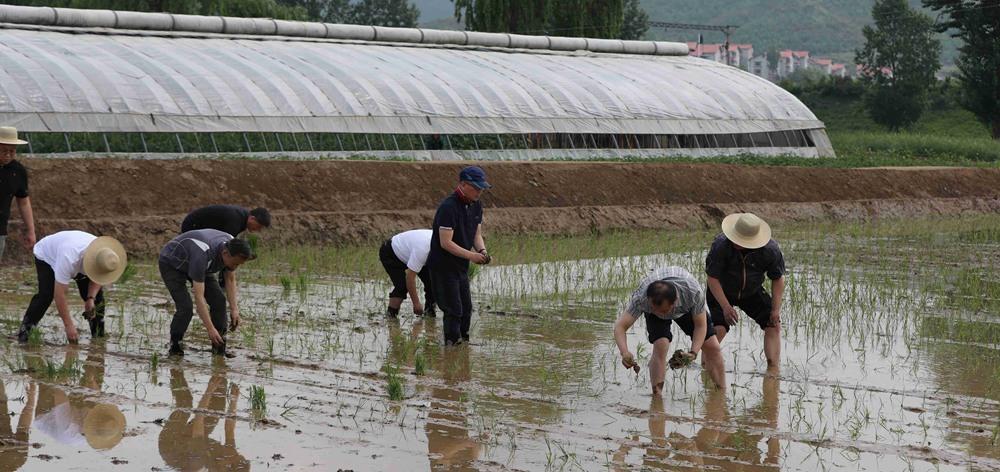 """БНАСАУ-Хятадын найрамдалт """"Таекам"""" газар тариалангийн фермээр зочлов"""